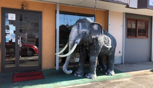 スリランカカレーはピリッと辛口で好き嫌いが分かれるかも。象さんが目印!