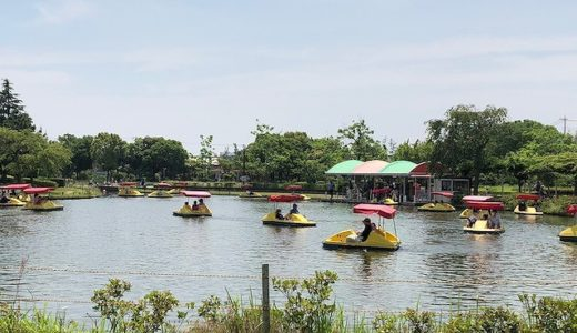 海南こどもの国は無料で遊べる広い公園